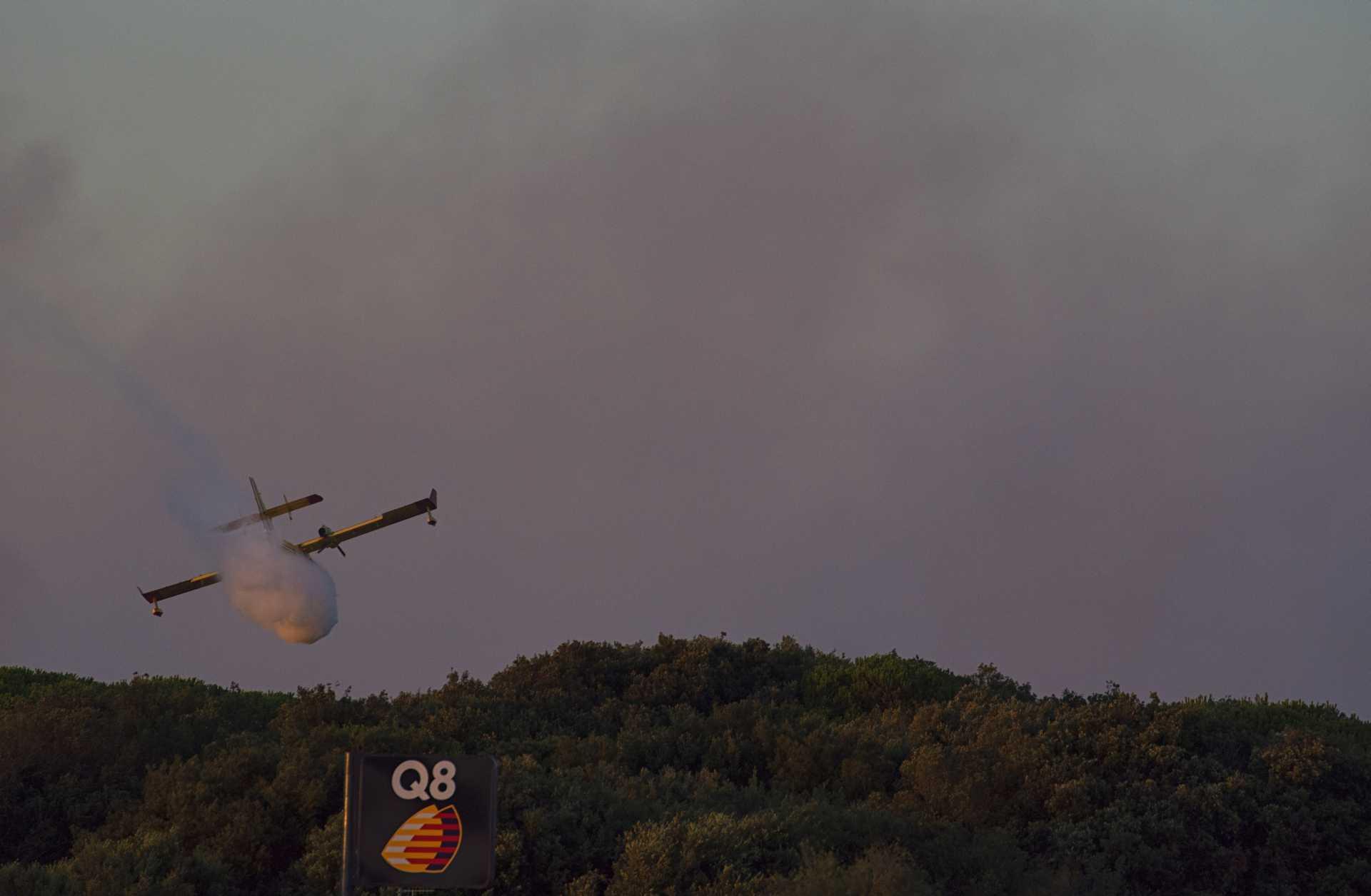 Un altro pezzo di pineta se ne va: l'incendio di Castelfusano
