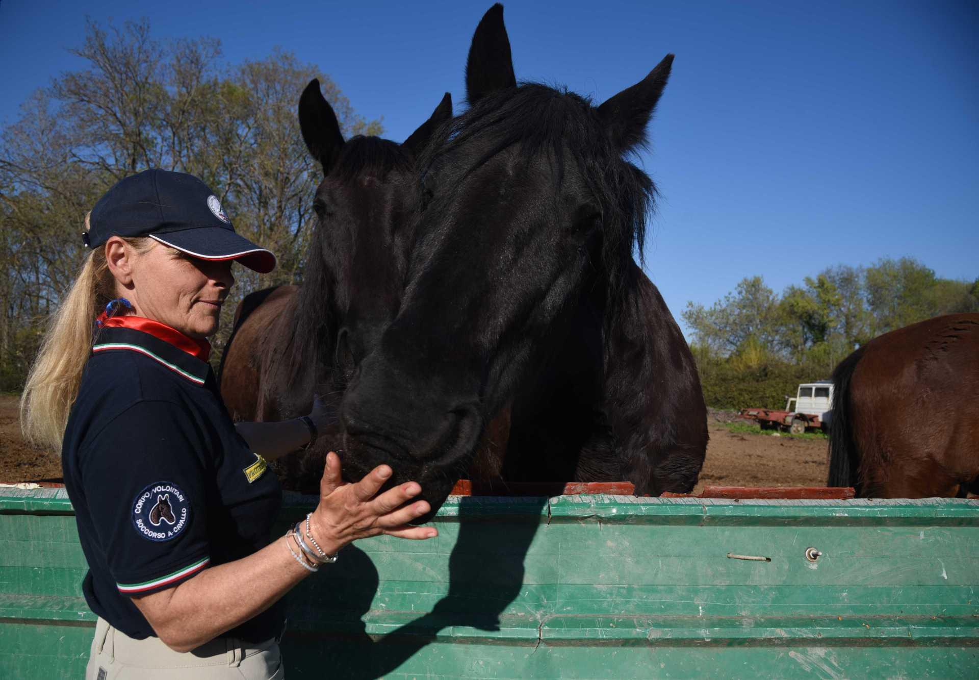 Appello della Protezione Civile a cavallo:cerchiamo una nuova sede