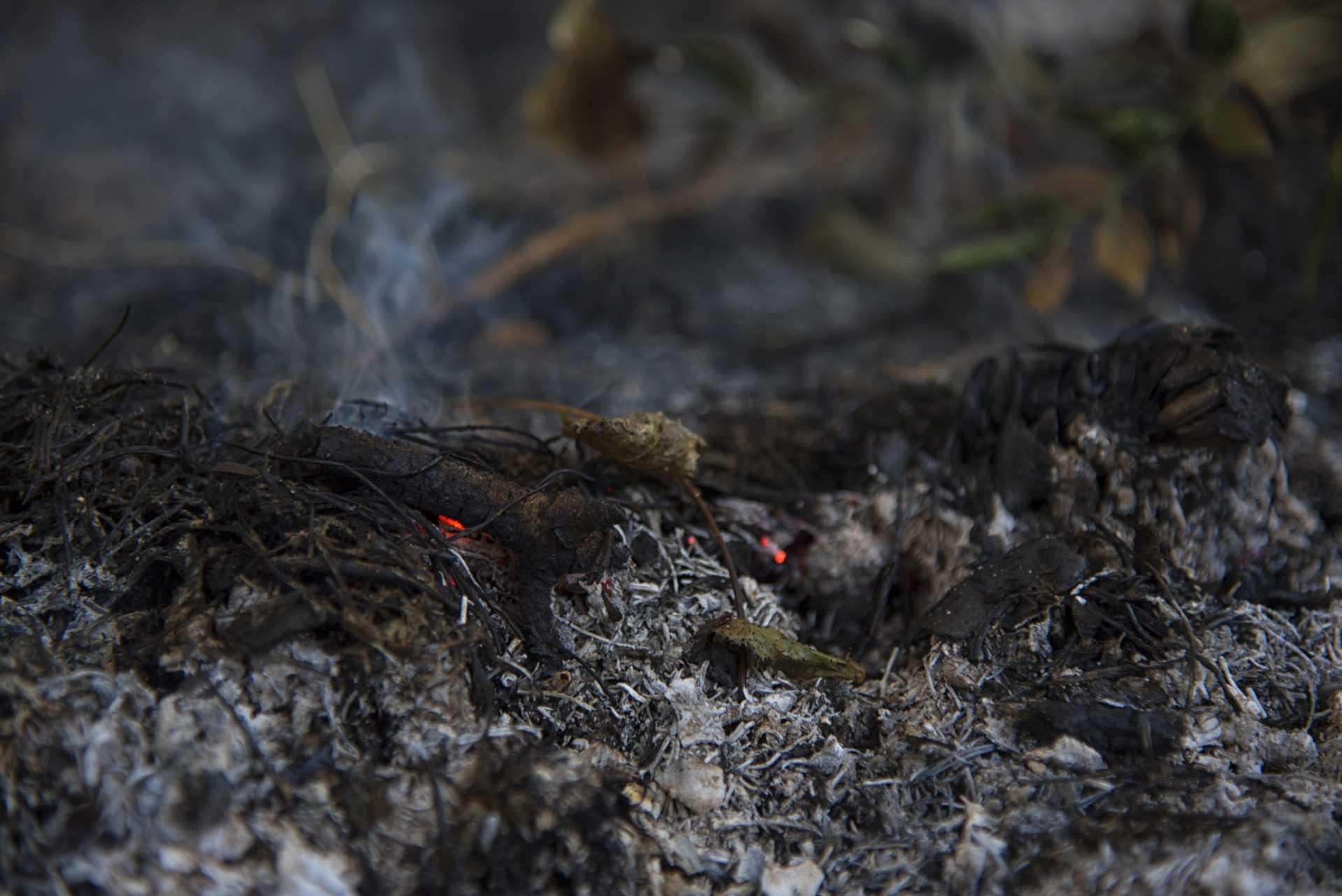 Bonifica incendio di Procoio a Ostia del 26 ottobre