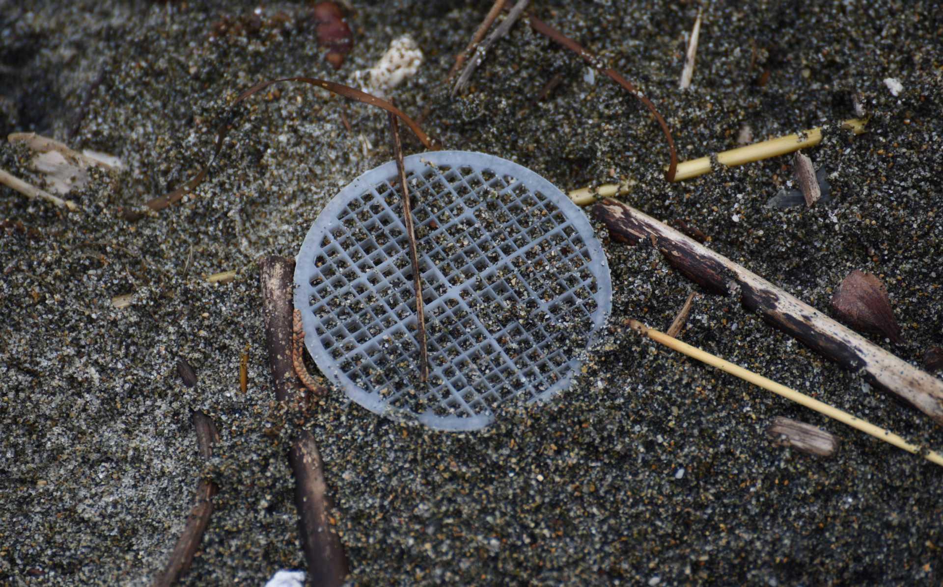 Il mistero dei dischetti in plastica sulla spiaggia