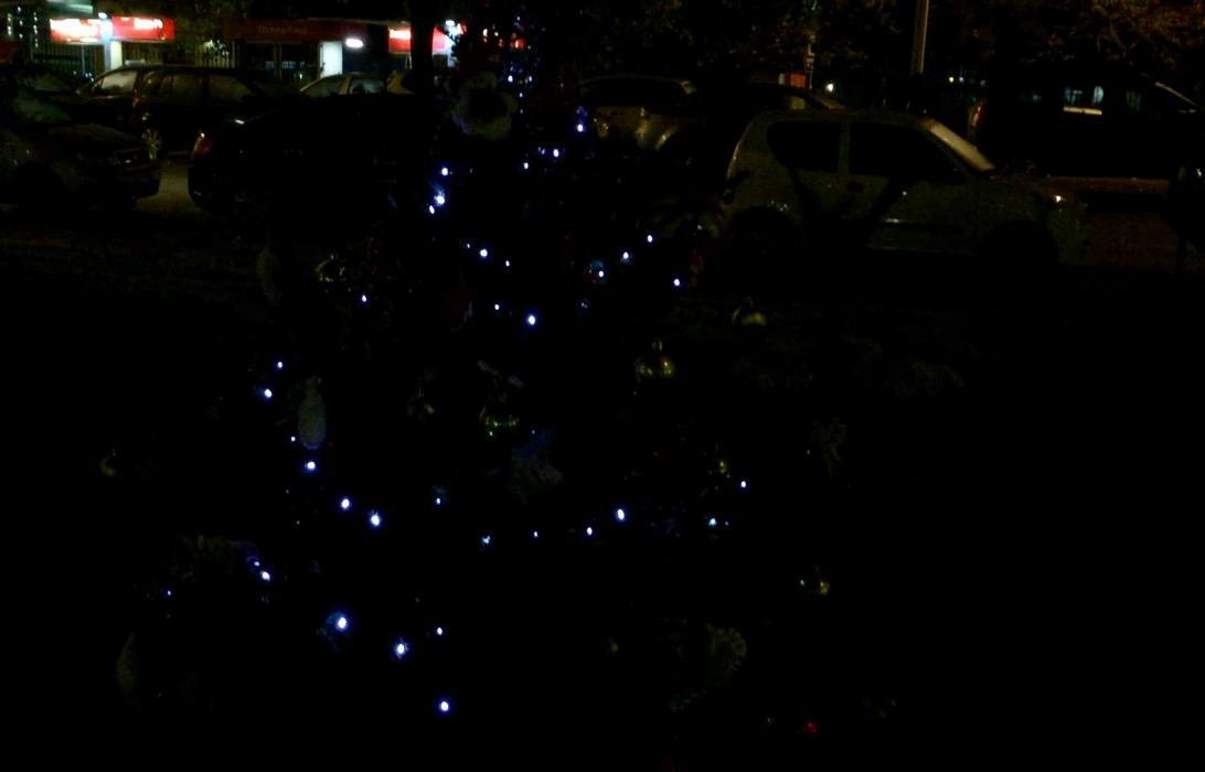 Retake Ostia: Obiettivo albero di Natale a Piazza Ronca