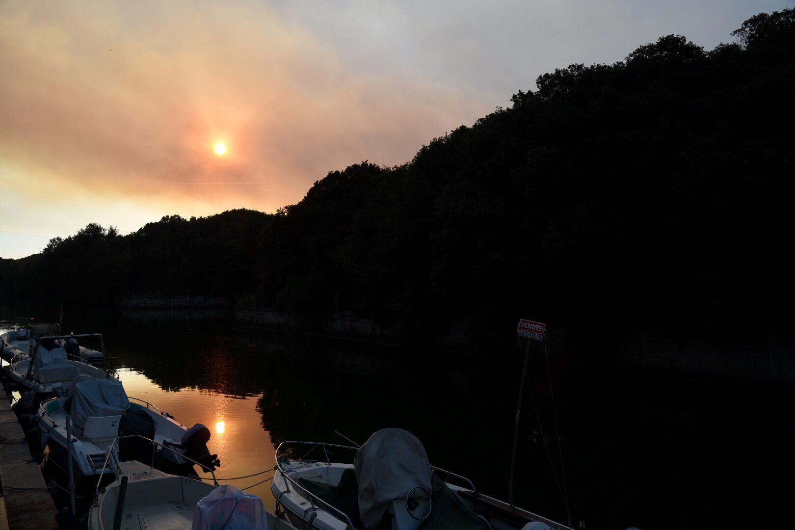 Dopo l'incendio di ieri a Castelfusano a Ostia, il risveglio è spettrale