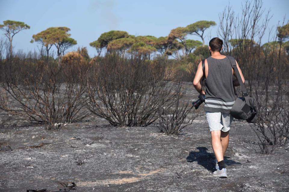 Un pensiero per Castelfusano: La mia Ostia racconta la pineta